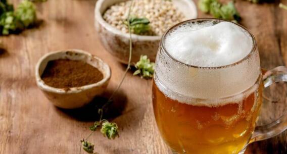 回收啤酒废料 用完的谷物可用于食品和生物燃料