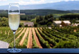 酒知识:5款风味迷人的气泡酒,约会欢庆场合不败的酒款!