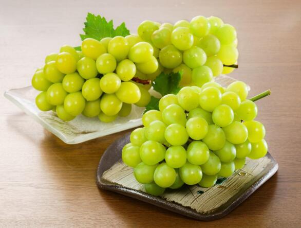 酒知识:全球最香的葡萄品种麝香葡萄,酿造的麝香葡萄酒也是最醇香的